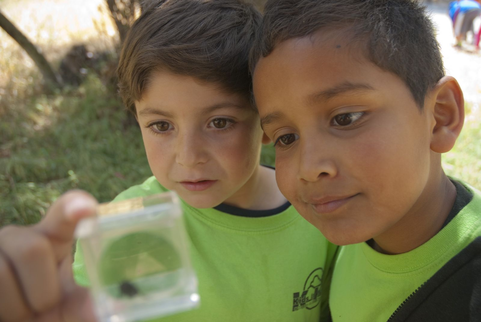 Kids In Nature sessions are held at the Conservancy's Nature Center at Avalon Canyon.